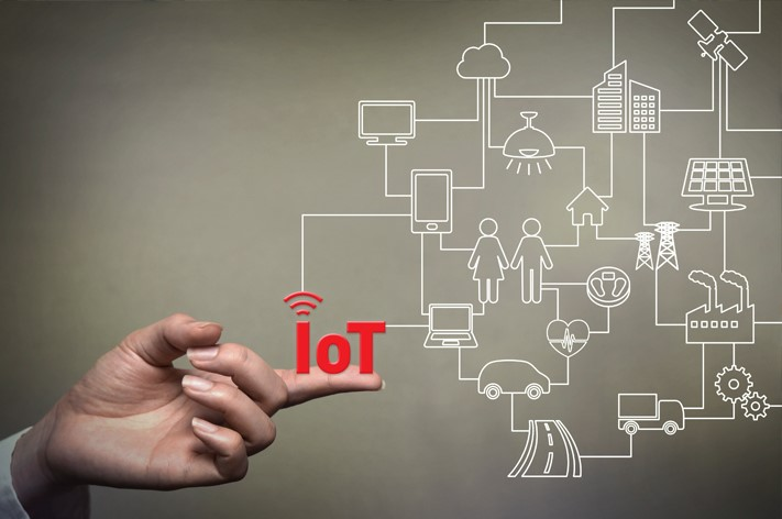 The Internet of Things (IoT) and Your Network